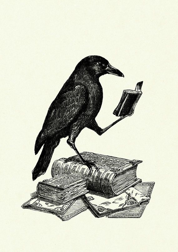 Halloween Raven Crow reading a Book - Victorian Steampunk art print Mehr