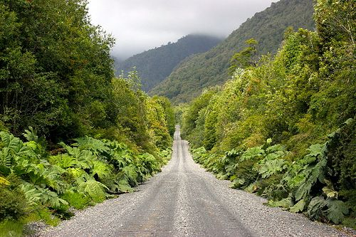 """PATAGONIA, CHILE: Carretera Austral, crossing Pumalin Park by thejourney1972 (South America """"addicted""""), via Flickr"""