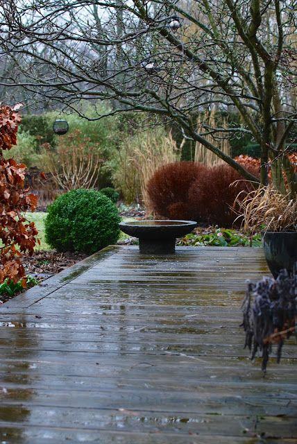Idag vaknade vi upp till snöblandat regn. Usch o fy! Jag tog mitt morgonkaffe och satte mig i soffan och tittade på några avsnitt av danska Havemennesker på TV2oj.dk (tack Ulrika för tipset!). Riktigt trevligt program. Fördelen med regna är att färgerna blir så mustiga och vackra. En li
