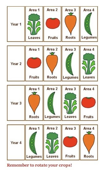 Simple crop rotation
