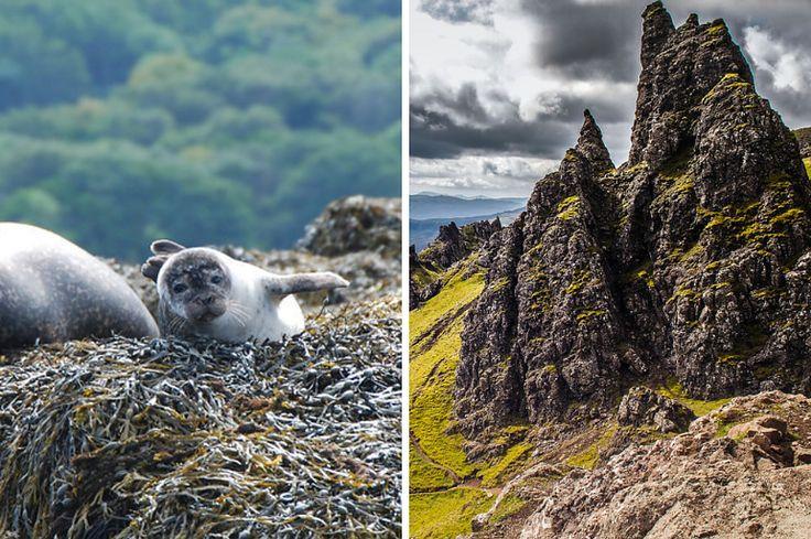 21 Reasons You Shouldn't Bother Visiting the Isle of Skye https://www.buzzfeed.com/natalyalobanova/no-actually-definitely-do-visit-skye?utm_term=.ejNXRp4WN