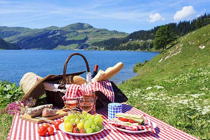 The Best Picnic Baskets Reviewed | Foodal