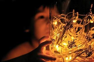Estéfi Machado: Luminária de Vaga-lumes!!