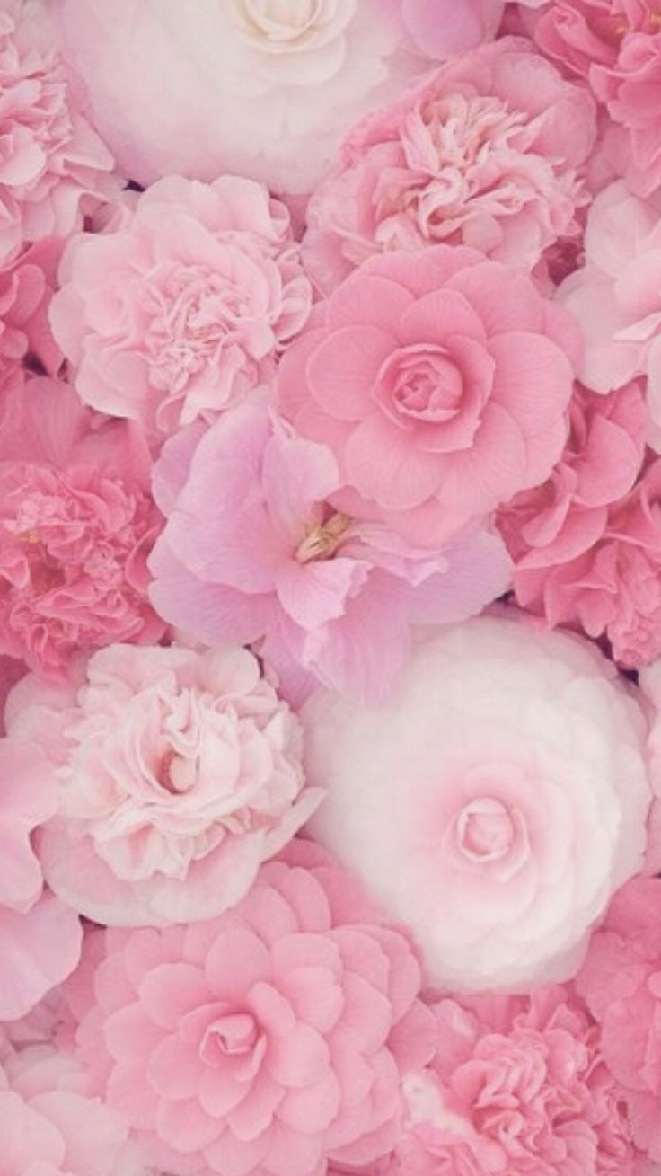 1000 ideas about pink wallpaper iphone on pinterest - Girly screensavers for iphone ...