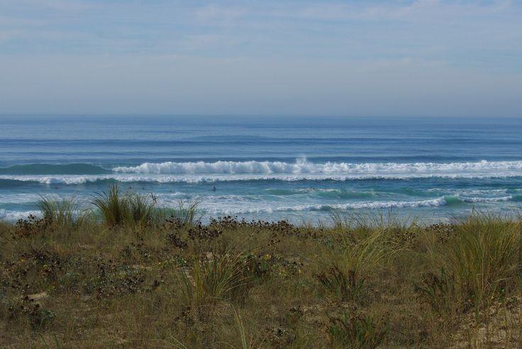 plage, dunes, les landes, océan, sable, aquitaine, france