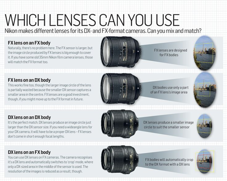 Full frame sensor size explained: exploit its advantages for pro-quality pictures | Digital Camera World - page 2
