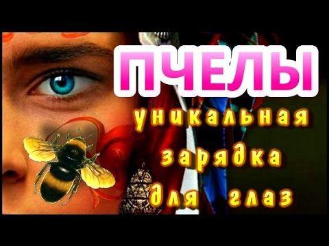 """Уникальная зарядка для глаз """"Пчелы"""" Это одна из уникальных зарядок для глаз """"Пчелы"""", которая тренирует зрительную систему человека с помощью видеоизображения."""
