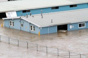 The barns at the Calgary Stampede are flooded.