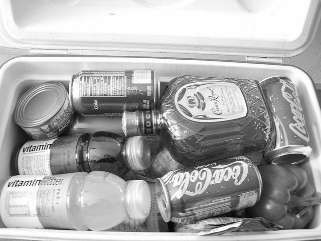 Food and drink are the cornerstones of a successful camping trip...learn how to keep both in optimum shape with these 5 tips for packing a cooler! http://sunnyscope.com/5-tips-for-packing-a-cooler/
