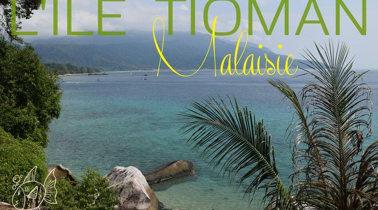 Bienvenue sur Tioman, une ile volcanique encore typique, assez sauvage qui a su garder une ambiance décontractée et authentique.