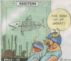 Sharks blue bulls