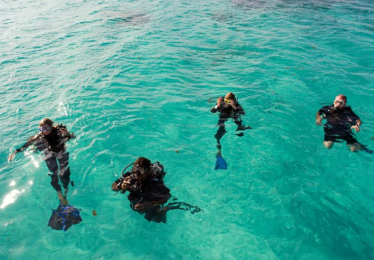 Fish, dive & kayak over spectacular reefs at Vamizi Kipila Villa in #Mozambique. #BucketList #Beach #Safari #Africa #Holiday #Travel #Ocean #Adventure #Diving #swim #island