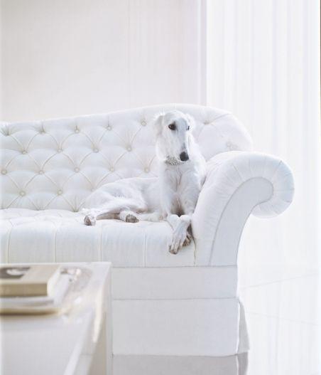 Polo Mallet White
