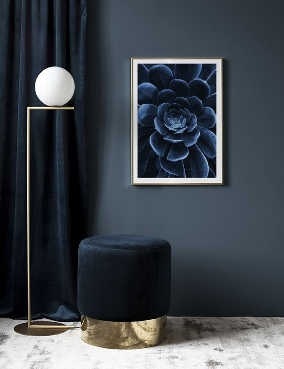 Blue succulent Poster in the group Prints / Sizes / 50x70cm | 20x28 at Desenio AB (3826)