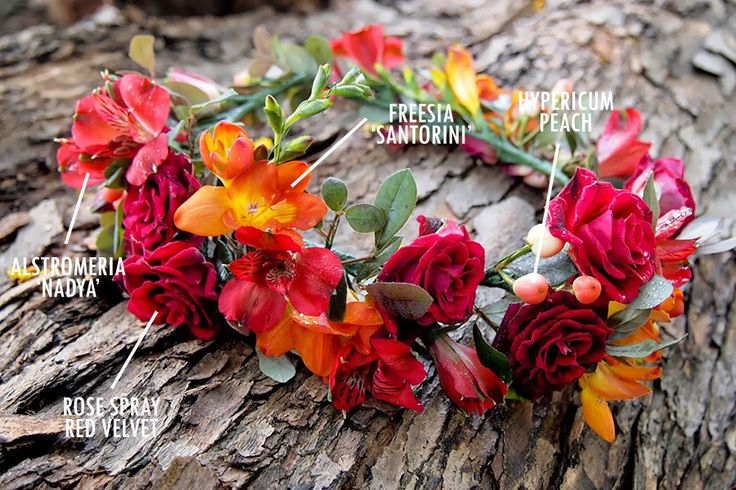 Floral Bouquet Recipes by Colour. This wreath has alstromeria, fressia, hypericum and rose spray