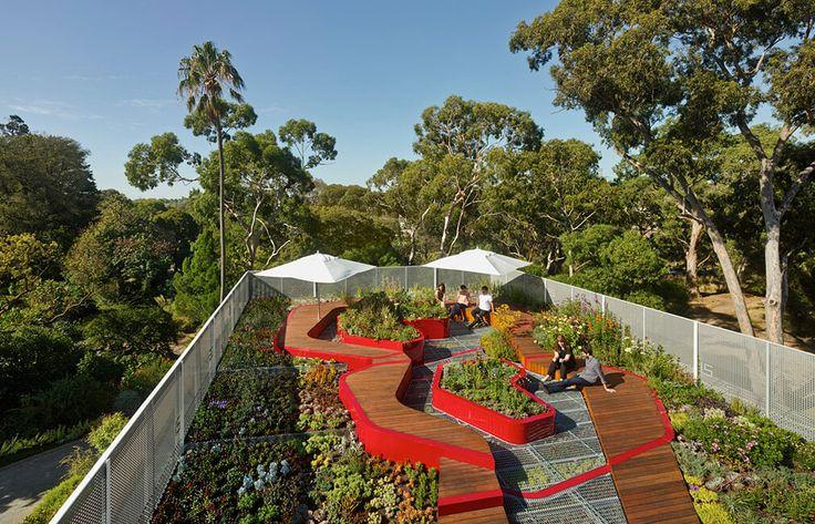 sortiment rostlin střešní zahrada - Hledat Googlem