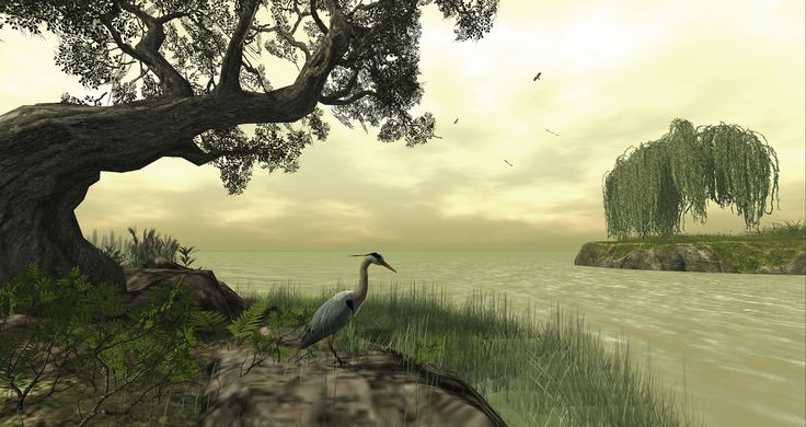 #secondlife  Whimberly