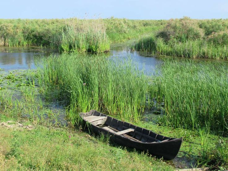 Some wildlife can be seen along this channel at Crisan in Romania's Danube Delta. The Navrom ferries call at Crisan and there is guesthouse accommodation.