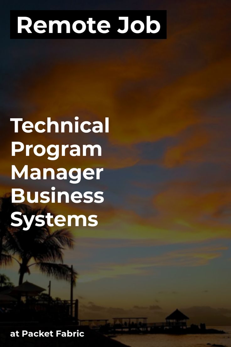 Remote Technical Program Manager Business Systems at