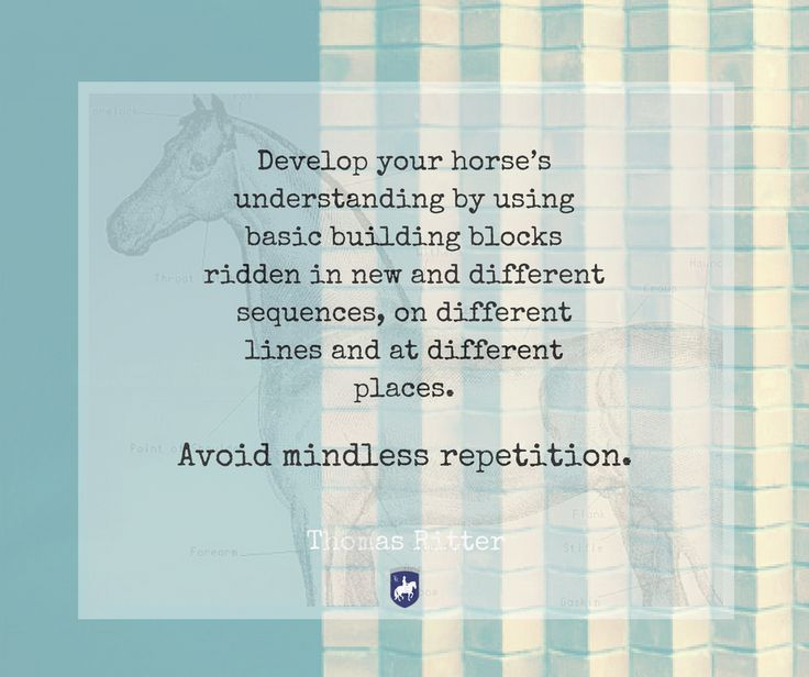 """Develop your horse's understanding by using basic building blocks ridden in new and different sequences, on different lines and at different places. Avoid mindless repetition."" - Thomas Ritter  artisticdressage.com"