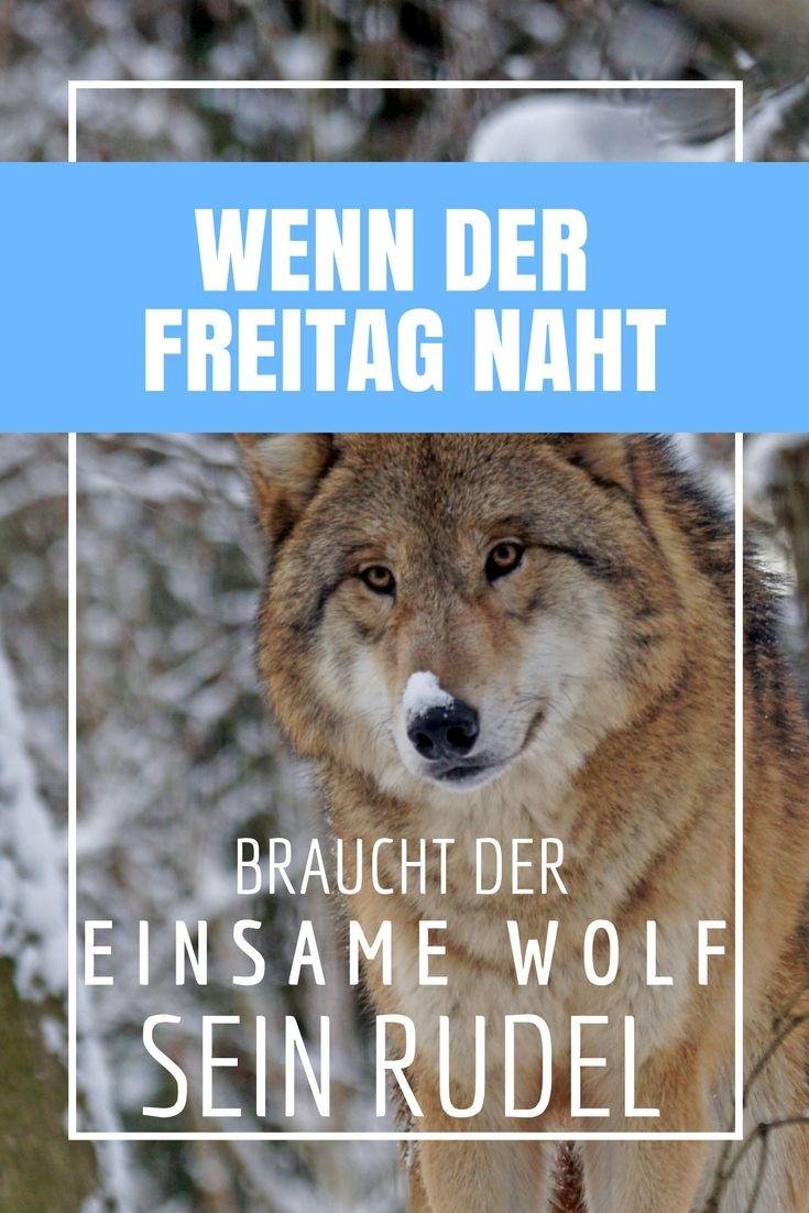 """Wenn der Freitag naht... ...dann heißt es: Brace yourself und schnapp dir dein Wolfsrudel, denn am Wochenende überlebt man nicht als einsamer Wolf. Für alle Film- und Serienfans gibt es tolle Shirts bei """"Geek ist in""""."""