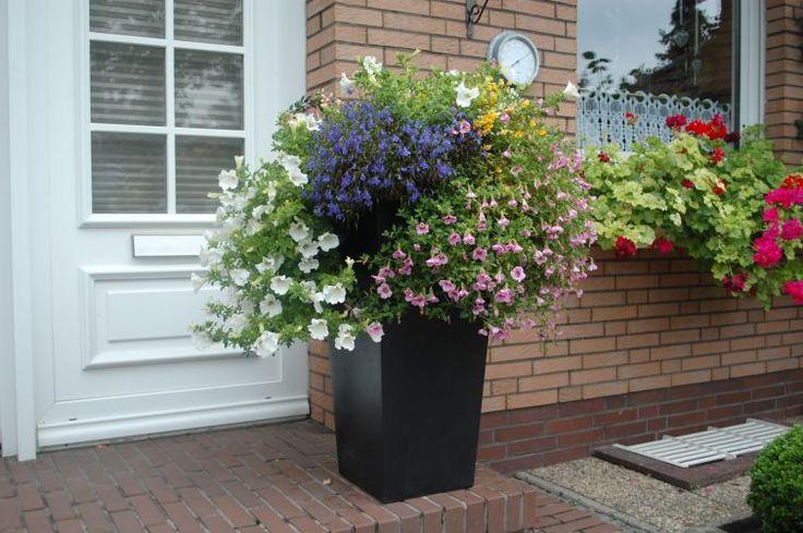 Pflanzkübel Anthrazit aus Fiberglas vor dem Hauseingang mit Blumen und hübschen Pflanzen. Weitere Pflanzkübel aus Fiberglas finden Sie unter https://www.vivanno.de/pflanzkuebel/materialien/fiberglas/ #Pflanzkübel #Anthrazit