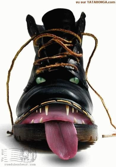 LOVE THIS SHOE... Doc martens... dogs gone wild!!!!