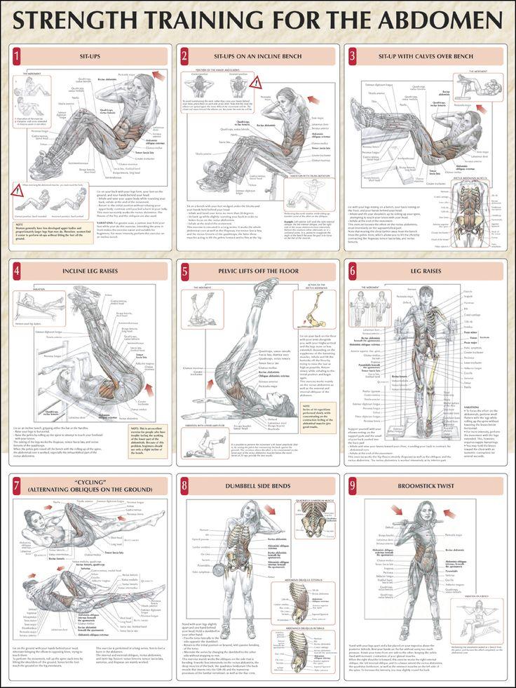 Strength Training For The Abdomen Chart