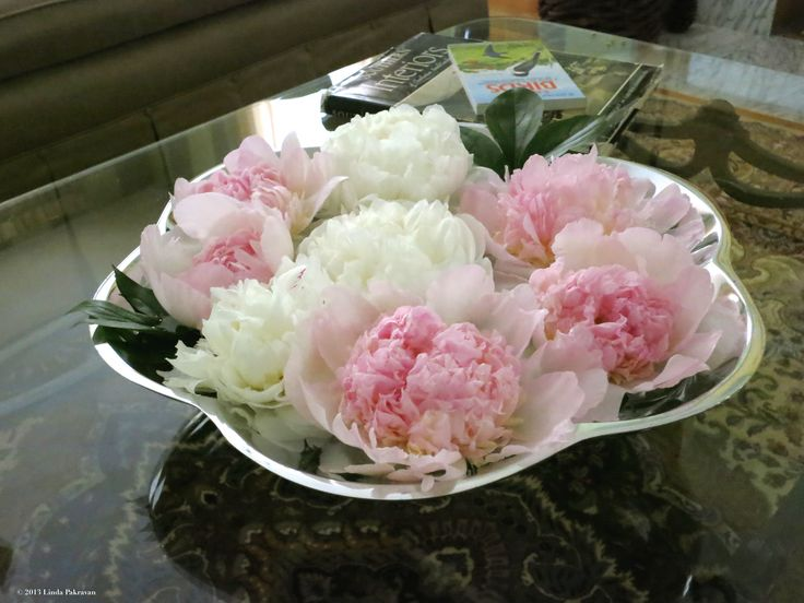 peonies floating in a nambe bowl, 2013