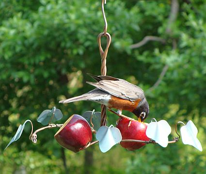images of DIY fruit bird feeders | Oriole Feeders, Oriole Bird Feeders For Feeding and Attracting Orioles ...