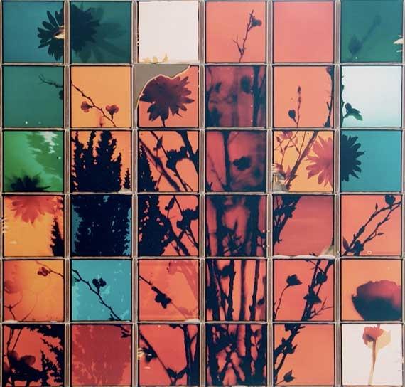 Patrick Winfield's Polaroid's Composites