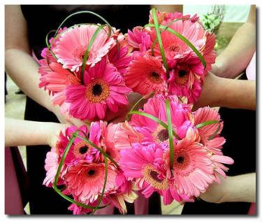 Gerbera daisy and lily grass bridesmaid bouquets. An inexpensive bouquet option.