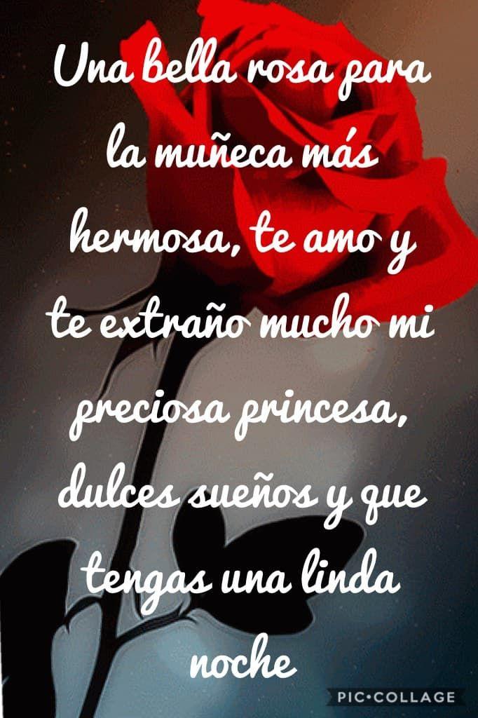 Una bella rosa para la muñeca más hermosa, te amo y te extraño mucho mi preciosa princesa, dulces sueños y que tengas una linda noche