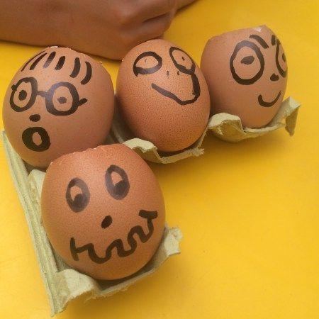 Día 10: plantar semillas en un huevo.