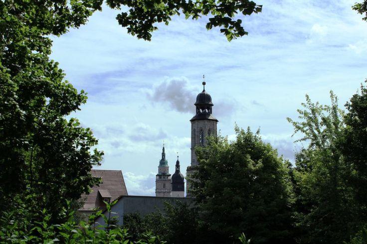 """Als """"die blühendste Stadt Europas"""" wird Bad Langensalza bezeichnet, auf Werbeflyern ist sie die """"Kur- und Rosenstadt"""". Warum?"""