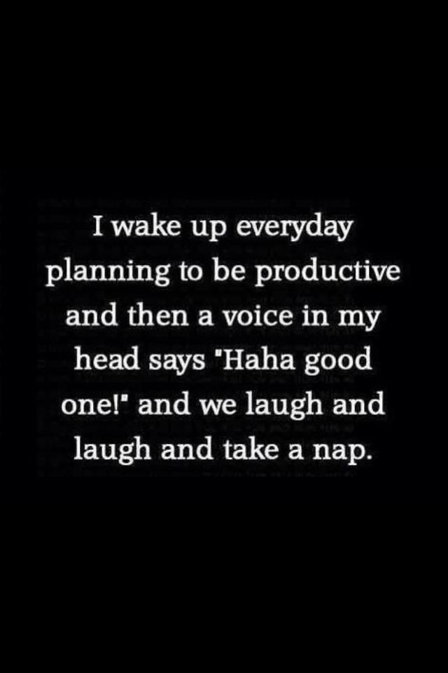 "I wake up everyday planning to be productive, and then a voice in my head says, ""Haha good one!"" and we laugh and laugh and take a nap."