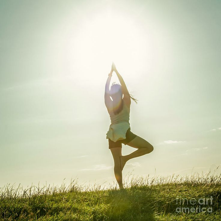 Tree Pose On A Hill Photograph