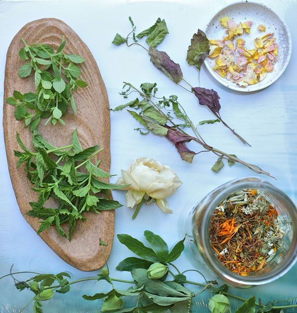 Fresh, Dried and from the Garden: Intuitive Herbal Tea Making Herbal Tea