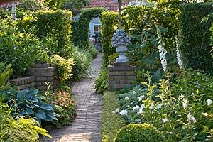 Dividing a long, thin garden with screens of greenery allows you to peek through to the next section