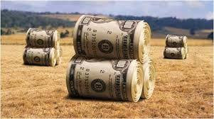 Agrotóxicos - Buscar con Google