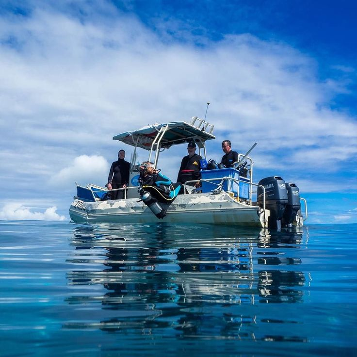 My office today at the Cocos Keeling Islands; showing our diving clients the beautiful #underwater #world  #ocean #photooftheday #dive #scuba #greendesk #instagram #instagood #travel #twitter #traveling #indianoceanexperiences #olympus #olympus_au #getoly