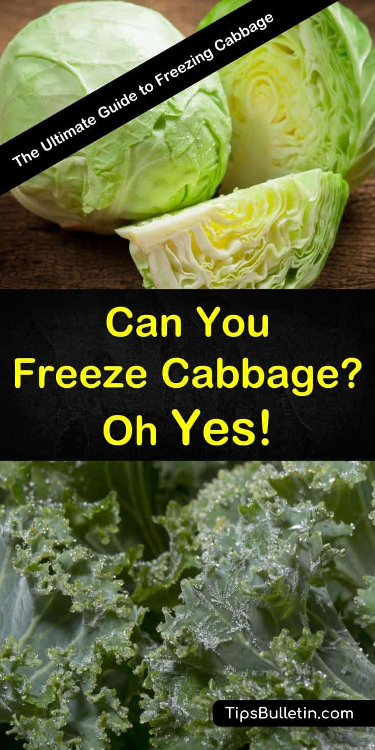 how to freeze cabbage raw