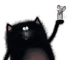 Splat the cat...