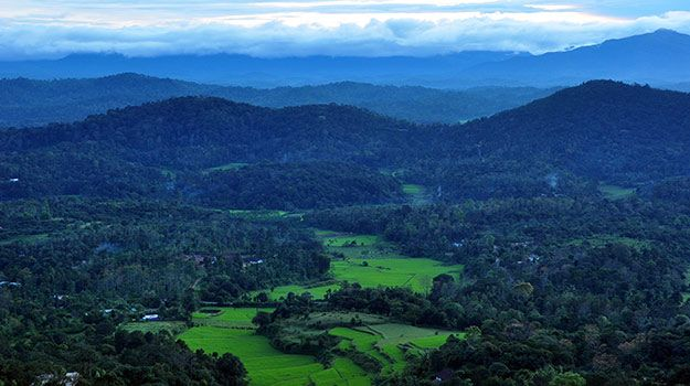Coorg, a hill station in Karnataka is known for its tea and coffee plantations.