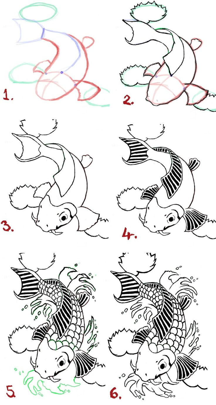 Koi fish tattoo drawings koi fish drawing steps by for Koi fish sketch