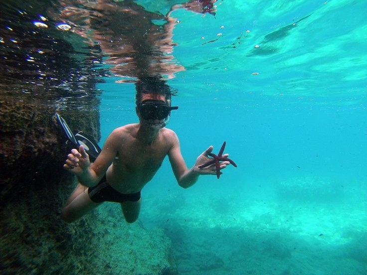Zakynthos snorkeling