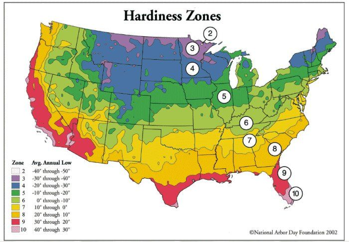what zone are you in?: Planting Zone, Search, Maps, Gardening Zones, Zone Map, Plants, Gardens, Flower, Hardiness Zone
