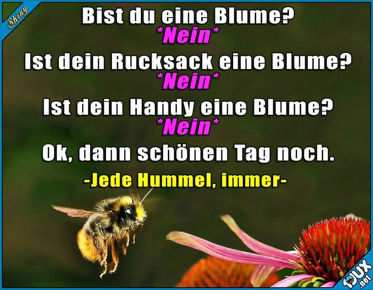 Bald geht's wieder los :) #Frühling #Sommer #Hummel #lustige #Sprüche #Humor #lachen #Jodel