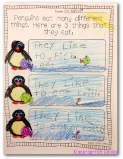 great nonfiction penguin unit!