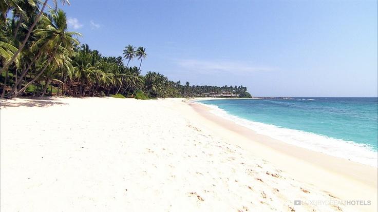 Tangalle Sri Lanka  city pictures gallery : Pristine beach Tangalle, Sri Lanka   Sun Paradise   Pinterest